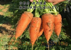 にんじん5kg わけあり 国産 京都府京丹後産 農家直送