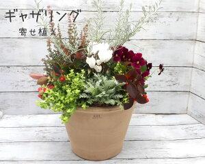 切り花 寄せ植え ギャザリング 生花 おまかせ 季節の 花 フラワー アレンジメント ガーデニング 花壇 鉢 花器 おしゃれ かわいい お花 屋外 玄関 華やか ローメンテナンス 簡単 日持ち プレゼ