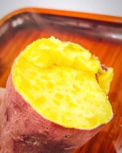 さつまいも 10kg 金時 京丹後市 糖度 甘い サツマイモ 選べる 3 サイズ 大 中 小 たっぷり 大量 焼き芋 天ぷら ふかし芋 大学芋 スイートポテト 和菓子 おすすめ ※ シルクスイート ではありま