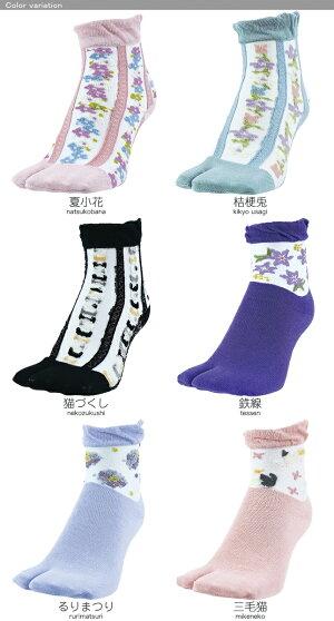 京都くろちく本店・シースルー足袋靴下