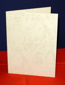 【A5用紙表紙】 2枚収納用 クリーム 証書ファイル 賞状ファイル 賞状ホルダー【ケース フォルダー バインダー 賞状入れ】