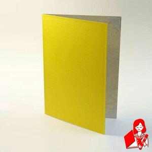 【A4用紙表紙】 2枚収納用 黄色 証書ファイル 賞状ファイル 賞状ホルダー 【ケース フォルダー バインダー 賞状入れ】