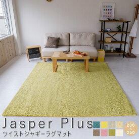 Jasper Plus(ジャスパー プラス) 国産ツイストシャギーラグマット 200cm×250cm ラグ ラグマット ラグ マット 絨毯 グレー カーペット 送料無料 ポリエステル 防音 不織布 ホットカーペット 手洗い おしゃれ ナイロン