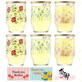 檸檬ひやしあめ ワンカップ 桜南食品 生姜湯 あめスキー 180ml 6本