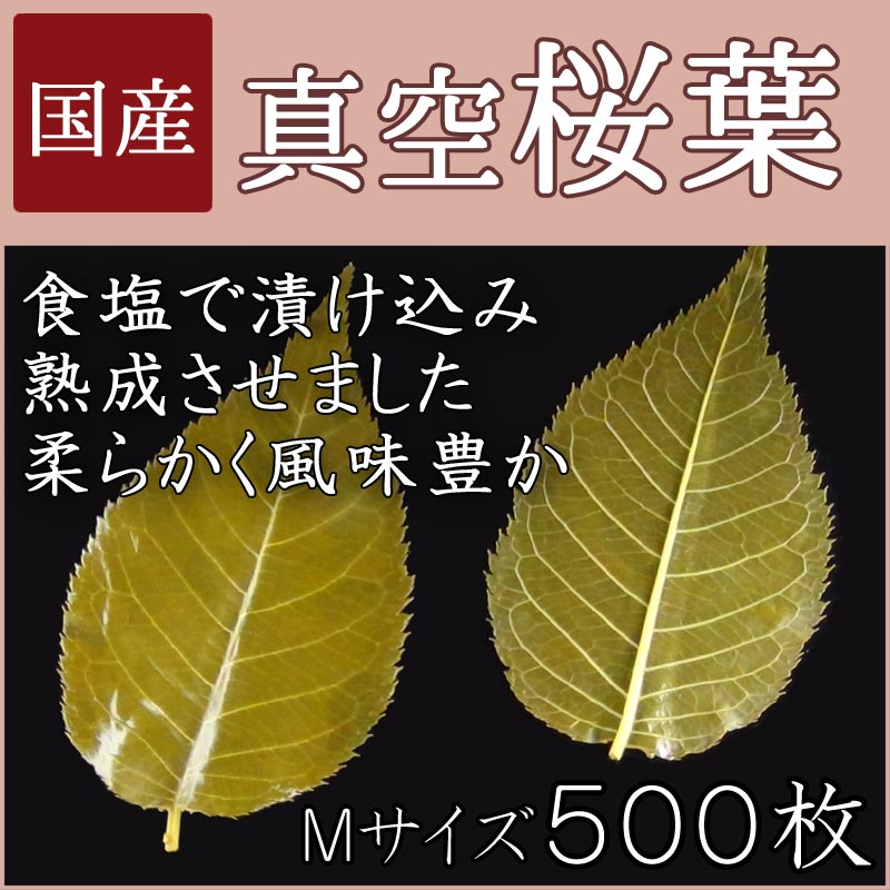 【真空国産桜葉Mサイズ 500枚】