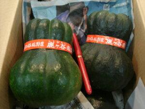 京都直送仲卸中西青果厳選京野菜鹿ケ谷かぼちゃ(ししがたにかぼちゃ)Mサイズ1個(800g以上) 鹿ケ谷南瓜