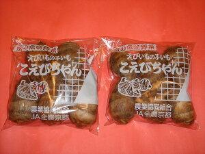 京都直送仲卸中西青果厳選京野菜こえびちゃん(子海老芋)えびいもの子いもです。300g