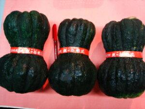 京都直送仲卸中西青果厳選京野菜鹿ケ谷かぼちゃ(ししがたにかぼちゃ)Lサイズ1個(1.5kg以上) 鹿ケ谷南瓜