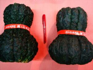 京都直送仲卸中西青果厳選京野菜鹿ケ谷かぼちゃ(ししがたにかぼちゃ)2Lサイズ1個(2kg以上) 鹿ケ谷南瓜