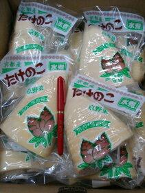 京野菜京都直送仲卸厳選とても美味しい京都筍水煮(洛西、塚原筍)300g1本入