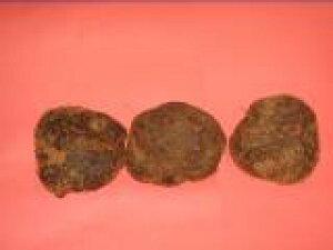 京野菜京都直送仲卸厳選 山の芋やまのいも2kg 肉質が締まり水分が少なく粘りが大変強いつくねいも 蕎麦 野菜 健康 つくね芋 山芋