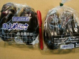 京都中央卸売市場中西青果仲卸直送だから新鮮!お徳用訳あり京野菜B品山科茄子(やましななす)2個入1袋 山科なす