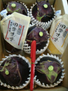 そのまま使える田楽白味噌、赤味噌各120g付きコロナ被害で高級京野菜の賀茂茄子が行き場をなくして農家さんが困ってます。どうか御支援よろしくお願いします!京都直送お徳用訳あり京の