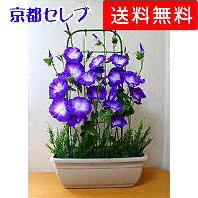●代引き不可【朝顔プランター】造花 あさがお アサガオ プランター 91623