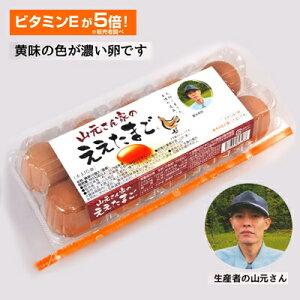●送料無料 山元さん家のええたまご 10個×12パック 卵 玉子 たまご タマゴ 41000