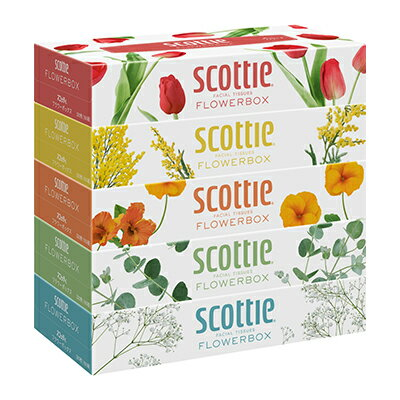 送料無料 スコッティ ティッシュペーパー 【フラワー】ボックス 160組 5箱×12パック まとめ買い 00158