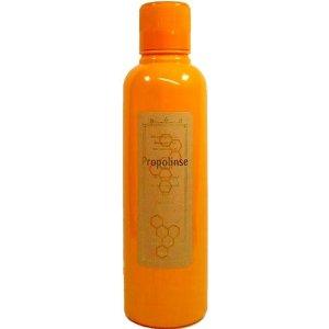 【2】 送料無料 口内洗浄、口臭予防に プロポリンス 600ml×2本 01504