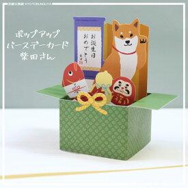 柴犬・柴田さんのポップアップバースデーカード立てて飾れます
