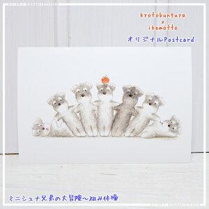 ikemotto x kyotobunguyaポストカード〈オリジナルデザイン〉ミニシュナ兄弟の大冒険〈ミニチュアシュナウザー〉