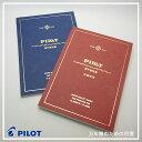 Pilot-paper-1