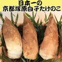 大枝塚原 タケノコ ブランド