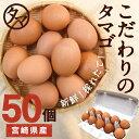 【送料無料】宮崎産タマゴ50個九州育ちのこだわりたまごこだわりの飼料とマイナスイオン水で育てた濃厚な味わいのタマ…