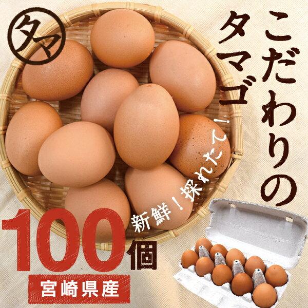 【送料無料】【定期購入】九州育ちのこだわりたまご南九州の大自然の中、こだわりの飼料と水で育てた濃厚な味わいの栄養豊富なタマゴ品質・衛生管理された安心・安全な高品質たまごをお届けします!【生卵/タマゴ/たまご】