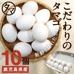 【九州 たまご】こだわり新鮮なとろ〜りたまご10個品質・衛生すべて管理された安心・安全なたまご鹿児島県産のフレッシュなタマゴです!【生卵/タマゴ/たまご】|南九州産 お取り寄せ お