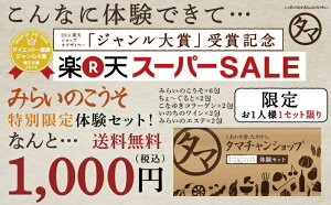 お得すぎる送料無料1,000円体験セット!