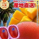 【送料無料】宮崎完熟マンゴー大玉2玉宮崎からお届けする南国の香り・とろける美味しさがいっぱいの完熟マンゴー地元…