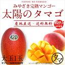 【送料無料】太陽のタマゴ(大玉1玉)最高級フルーツ宮崎の厳しい基準を乗り越えた『香り・色艶・糖度』全てがプレミア…