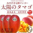 【送料無料】太陽のタマゴ(大玉3玉)最高級フルーツ宮崎の厳しい基準を乗り越えた『香り・色艶・糖度』全てがプレミア…