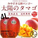 【送料無料】太陽のタマゴ(超特大玉2玉)最高級フルーツ宮崎の厳しい基準を乗り越えた『香り・色艶・糖度』全てが最高…
