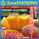 【送料無料】スマステーション紹介!お得な訳あり宮崎完熟マンゴーメガ盛り5kg詰め(訳あり)正規品より安くで味わえ…