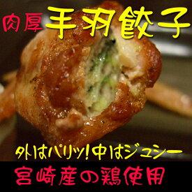 【宮崎鶏使用】肉厚手羽餃子〜10本入り〜 ジューシーでやわらか〜