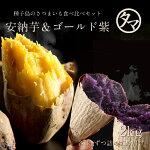 【送料無料】人気の安納芋&ゴールド紫の種子島夢芋セット2kgテレビ・メディアで話題沸騰のまるでスイーツのような甘さの超高糖度安納芋と貴重な種子島ゴールド紫芋のスペシャルセット!