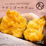 幻のサツマイモ「栗黄金」