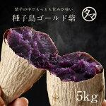 種子島ゴールド紫芋5kg