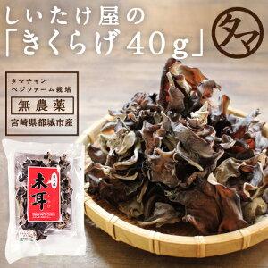 【送料無料】ぷりぷり!コリコリ!タマチャンの無農薬乾燥...