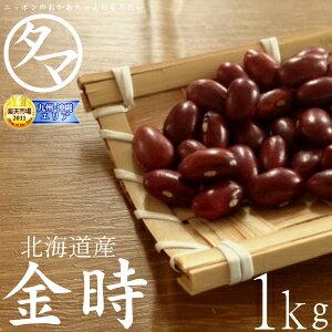 北海道産 金時豆 1kg(令和元年度産)楽天市場特別価格で「金時豆」販売中!ホックホクで絶妙の食感で甘さのある美味しさです。生金時 金時の栄養 国産 金時豆|タマチャンショップ 健康食