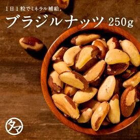 【送料無料】ブラジルナッツ250gまるでバターのような濃厚な味わいを楽しむことができるアマゾン川流域だけで収穫される稀少なナッツ