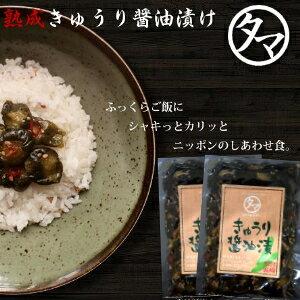 【送料無料】「宮崎産きゅうりの醤油漬け」2袋セット生産量日本一の宮崎の新鮮な採れたてのきゅうりを醤油漬けした、ご飯に合うおつまみにも美味しい逸品!【漬物】【九州 野菜】【ご
