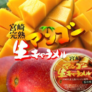 (冷蔵便)生キャラメルと宮崎完熟マンゴーのとろける口どけに濃厚なマンゴーの香りが口いっぱいに広がる幸せスイーツ登場!【メール便不可】【宮崎マンゴー生キャラメル】