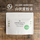 【送料無料】山伏茸粉末(60g)考える力の栄養源として認められたヤマブシタケには、このきのこしか持たない特有の栄養…