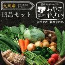 【送料無料】九州野菜セット (たまご付)九州野菜13品ベストセレクション九州の美味しい野菜をタマチャンショップが選…
