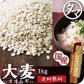 【送料無料】九州産 大麦(押し麦) 1kg食べる食物繊維・大麦βグルカンの宝庫な食材。注目される第6の栄養素とされる食物繊維を豊富に含んだ食材。炊飯や料理にお使い頂けます。|オオムギ 胚芽押し麦 胚芽押麦 無添加 国産 オオムギ