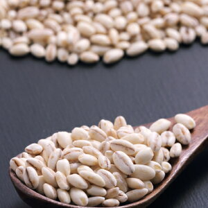 TVで話題沸騰!【送料無料】もち麦500g(国産・無添加・30年度産)もっちりプチプチとした食感と食物繊維が豊富!高タンパク、高ミネラルで、β-グルカンという食物繊維は白米に比べ20倍以上!|国産もち麦遺伝子組み換えなしもちむぎもち麦国産もち麦ごはん