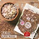 【送料無料】超希少な紫もち麦200g(九州産/30年度産)紫が濃い状態で収穫したもち麦です。もち麦に比べてポリフェノ…