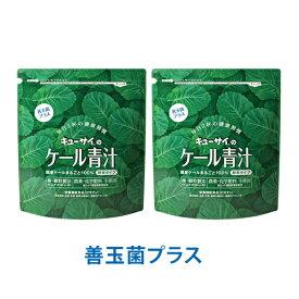 キューサイ青汁 ケール青汁善玉菌プラス420g入 2袋まとめ買い