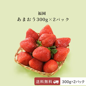 いちご あまおう 福岡産 博多 新鮮 送料無料 採れたて即発送 300g×2パック